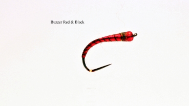 Buzzer G. B. Red & Black